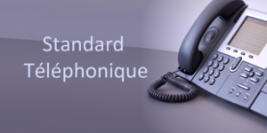 standard telephonique